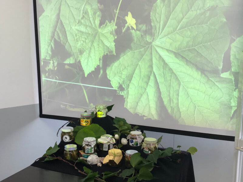 食品加工実習の授業